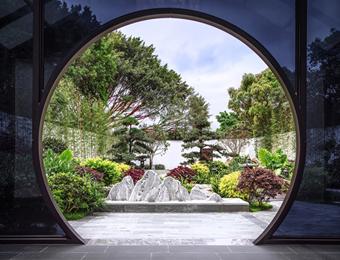 繁华深处的一方静谧之地 竹语茶室