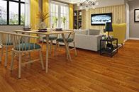 扬子地板给你一个健康温暖的家