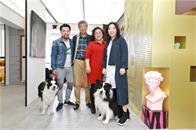 东方卫视《美好生活家》挑战脏乱画室 打造艺术家式撞色空间