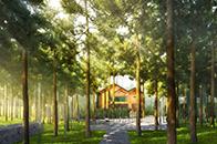 ENJOY DESIGN丨取纳自然的宁静 生长在树林里的小木屋