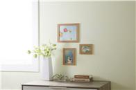 乳胶漆,壁纸和硅藻泥,哪种好?有什么差别?