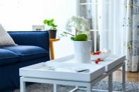 """長租公寓的""""跑馬圈地""""帶給家居行業哪些新的機遇?"""