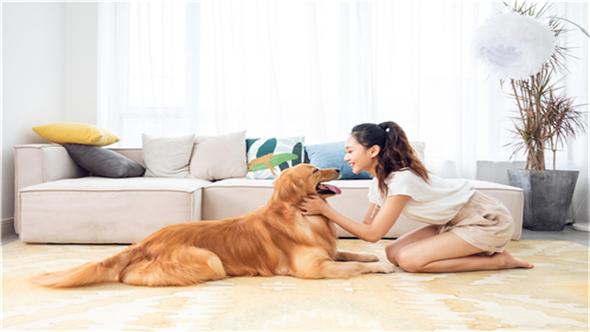 寵物消費市場規模驚人 家電業能否分一杯羹?