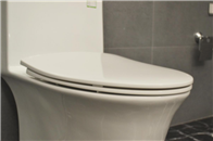 評測:法恩莎FB16176環抱式沖水馬桶 換種方式體驗潔凈