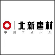 """北新建材:打造中国高端自主品牌""""龙牌"""""""