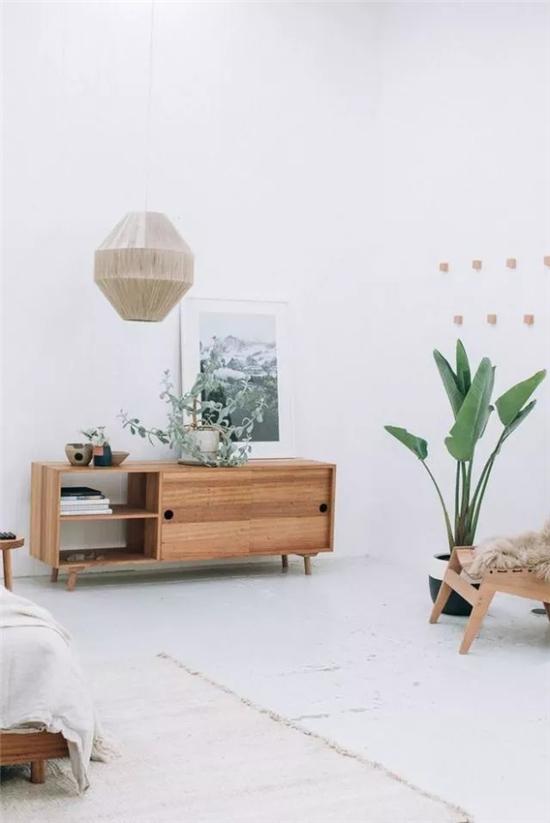 客厅家居软装绿植的搭配技巧