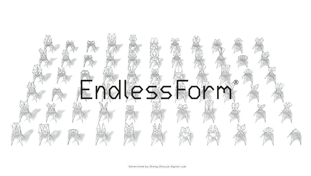 011_Endless Form .jpg