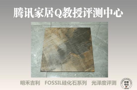 明禾吉利 FOSSIL 硅化石系列带你了解文艺复兴时代的自然艺术与生态健康1829.png