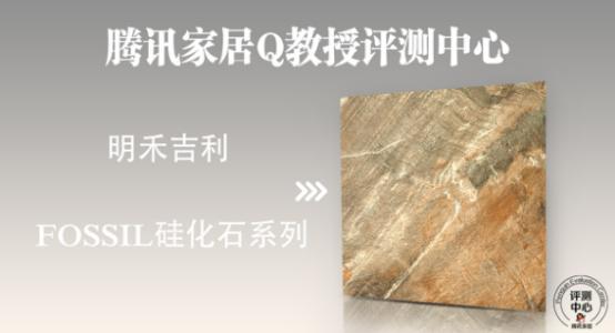 明禾吉利 FOSSIL 硅化石系列带你了解文艺复兴时代的自然艺术与生态健康583.png