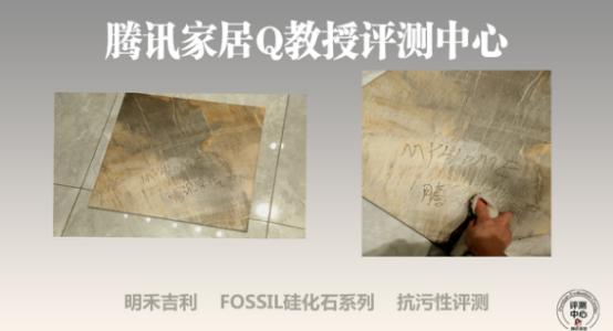 明禾吉利 FOSSIL 硅化石系列带你了解文艺复兴时代的自然艺术与生态健康1952.png