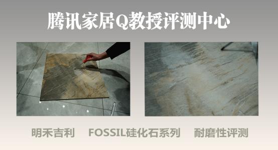 明禾吉利 FOSSIL 硅化石系列带你了解文艺复兴时代的自然艺术与生态健康2097.png