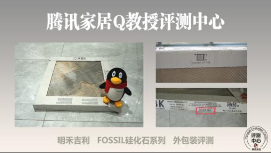 明禾吉利 FOSSIL 硅化石系列带你了解文艺复兴时代的自然艺术与生态健康729.png
