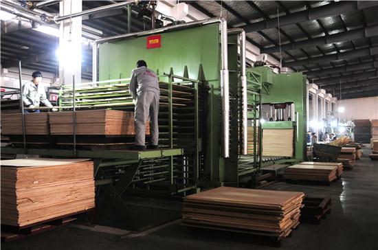 实木多层复合地板生产线.jpg