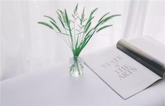 花瓶8.jpg