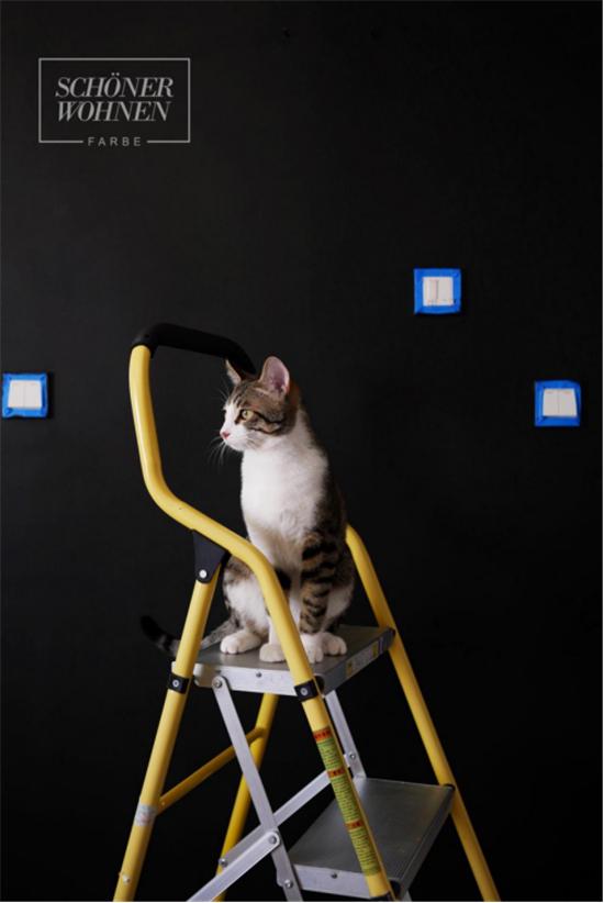 用舒纳黑板漆记录生活,让墙面更富有生命931.jpg