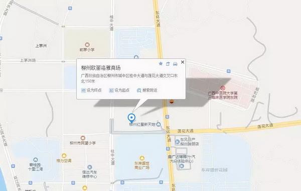 中信红木柳州专卖店地址.jpg