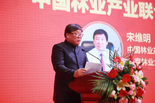 中国林业产业联合会副会长、北京林业大学原校长宋维明致辞