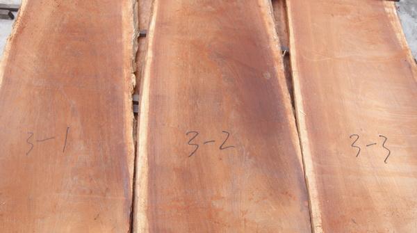 同根木头的木板编号进入烘干房烘干.jpg