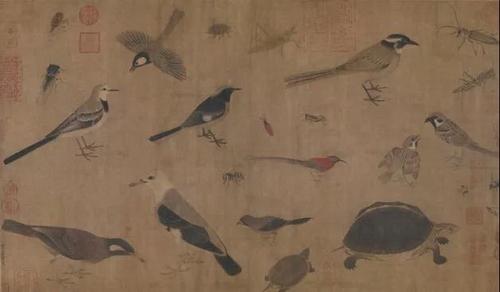 黄筌《写生珍禽图》卷   五代