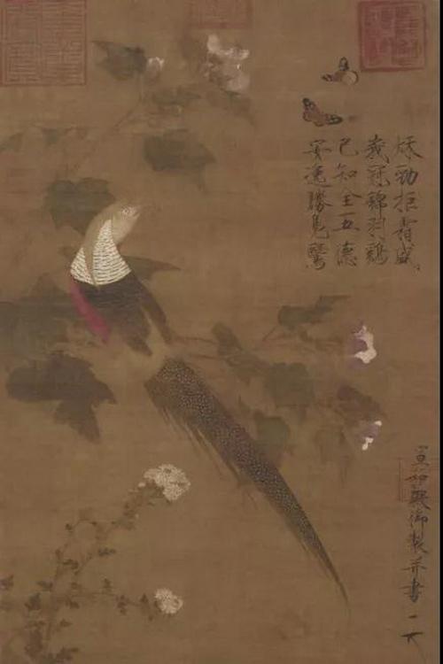 北宋 赵佶《芙蓉锦鸡图》