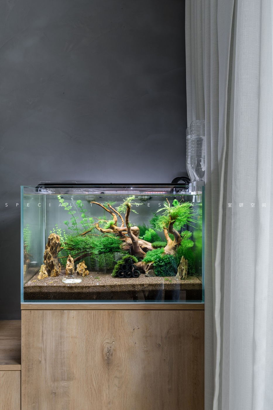 客厅-鱼缸.jpg